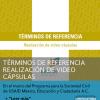 DOS TÉRMINOS DE REFERENCIA PARA LA REALIZACIÓN DE VIDEO CÁPSULAS