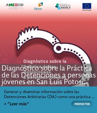 Diagnóstico sobre la Práctica de las Detenciones a personas jóvenes en San Luis Potosí 2010-2017